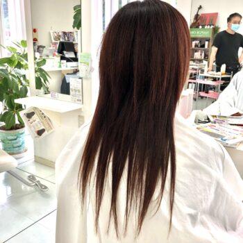 究極の毛髪再生